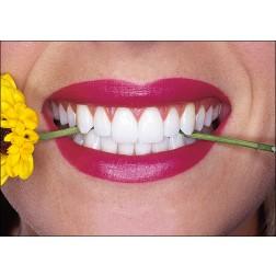 Lächeln mit gelber Blume