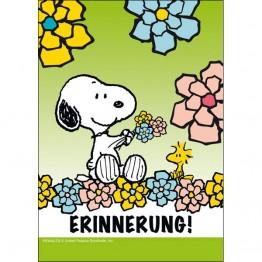 Erinnerung! (Frühling)
